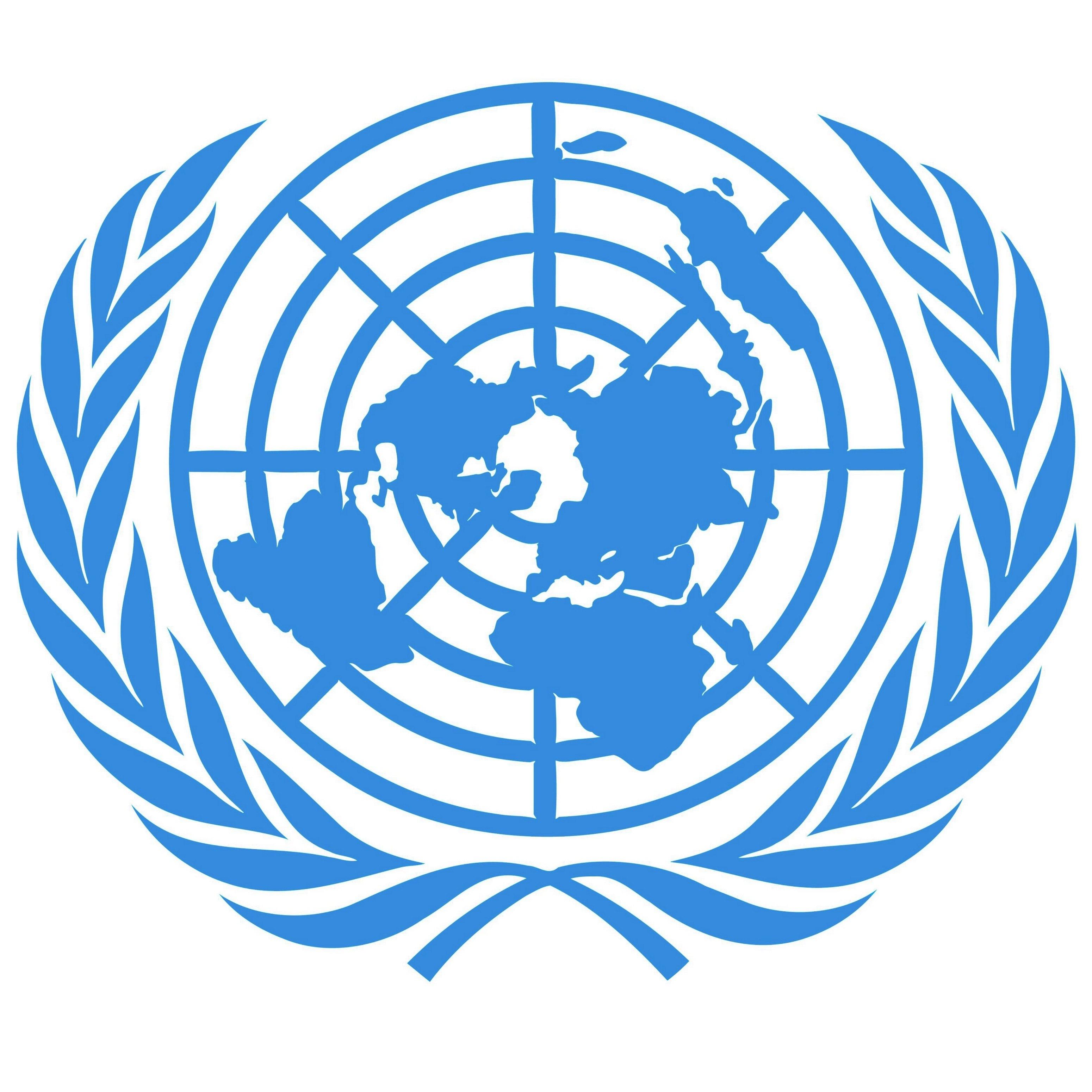 ميثاق الأمم المتحدة المقدمة نظرة تاريخية